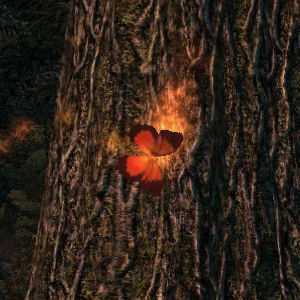Firemoth