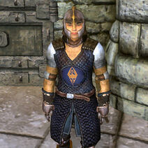 Sancre Tor Guard Cuirass
