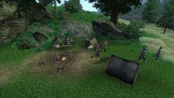 Tower Shade Camp (2)