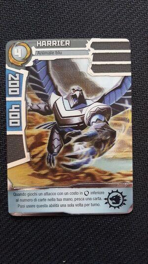 HarrierBlue
