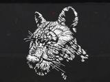 Легендарная пантера Гиагуаро