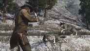 Rdr wolf01