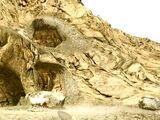 Rattlesnake Hollow