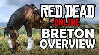 Red Dead Online Horses - Breton Overview
