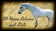 Red Dead Redemption 2 All Horse Colours All Horse Stats