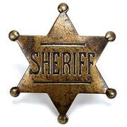 SheriffBadge2232