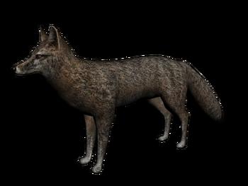 3D-Modell