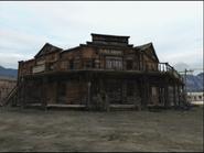 Saloon de armadillo