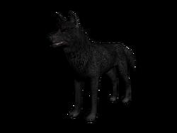 Lobo3D