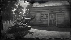 Jagd-Anfragen