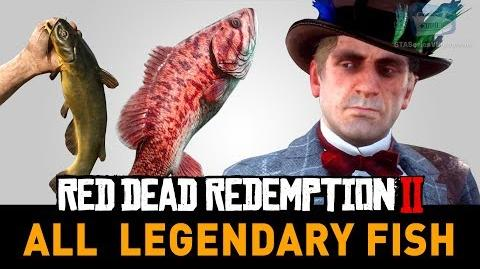 Red Dead Redemption 2 All Legendary Fish (A Fisher of Fish)