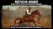 Rotfuchs-Araber3
