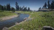 Little Creek River3
