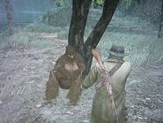 Bigfoot unterm Baum