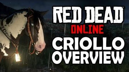 Red Dead Online Horses - Criollo Overview