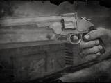 Schofield-Revolver (RDR2)