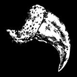 Pumakralle