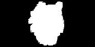 Timberwolf Bild 2