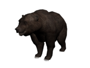 Grizzly3D