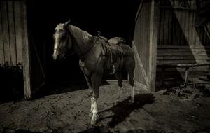 Pferd (RDR2-Pausenmenü)