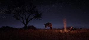Lager (PC-Trailer)