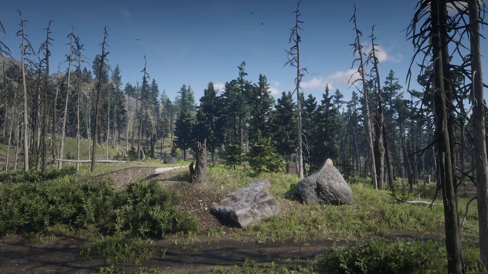 black bone forest