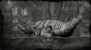 Legendärer Riesenalligator 3
