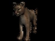 Puma3D