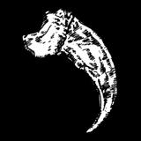 Bärenkralle