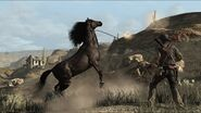 Rdr buckinawesome03-490x275