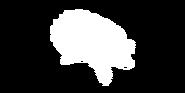 Geierschildkröte Bild 2