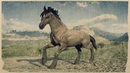 Mustang Tigerstreifen-Brauner 1