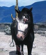 RDR Dark Horse