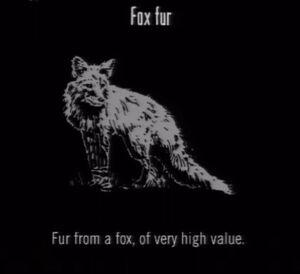 Animals Fox Fur