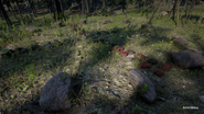 RDR2 POI 05 Native Burial 01