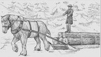 Belgian Draft Horse catalogue