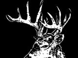 Buck Skin