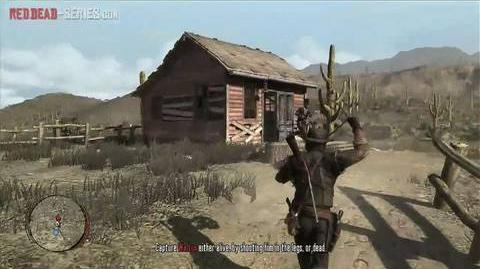 Political Realities in Armadillo (Gold Medal) - Mission 8 - Red Dead Redemption