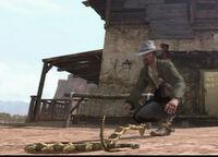 Rattlesnake-lunges-for-Heath-Michaels
