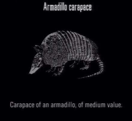 Bestand:Animals Armadillo Carapace.jpg