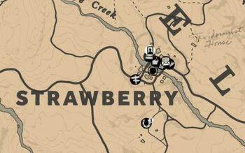 Red Dead Redemption 2 Watsons Blockhutte Karte.Strawberry Red Dead Wiki Fandom Powered By Wikia