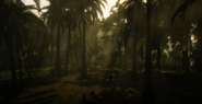 Jungles in Guarma 10