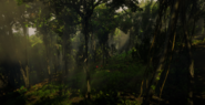 Jungles in Guarma 4