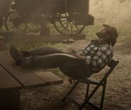RDR2 Bill at Rest