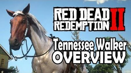 Red Dead Redemption 2 Horses - Tennessee Walker Overview