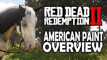 Red Dead Redemption 2 Horses - American Paint Overview