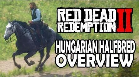 Red Dead Redemption 2 Horses - Hungarian Halfbred Overview