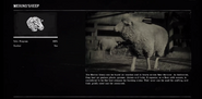 SheepProfileRDR2
