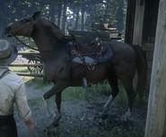 RDR Jeremiah Horse