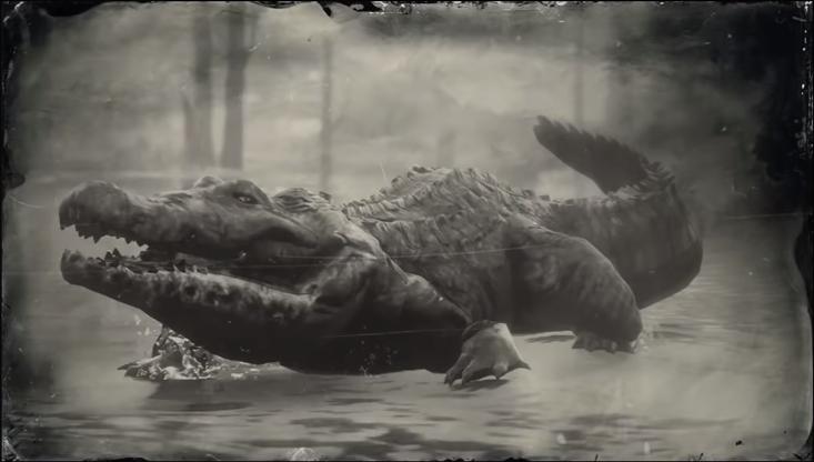 Alligator | Red Dead Wiki | FANDOM powered by Wikia